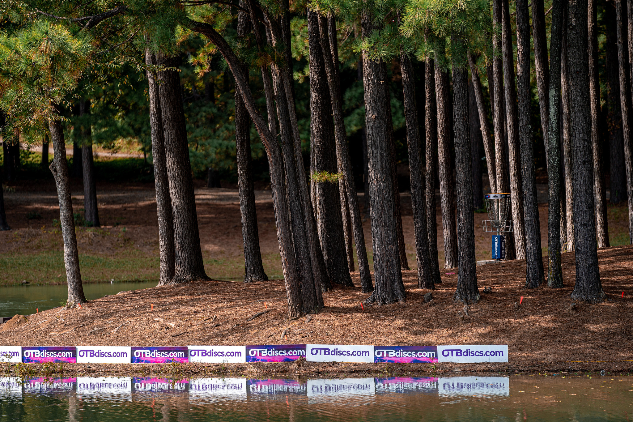 2020 Disc Golf Pro Tour Championship presented by GRIP6: Semifinals Recap